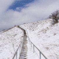 лестница в небо :: Галина Кубарева