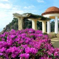 Ботанический сад Маримуртра (Бланес, Каталония) :: Алла Захарова