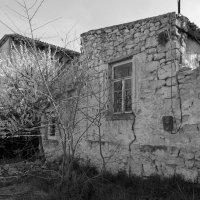 старый дом :: ВАДИМ СКОРОБОГАТОВ