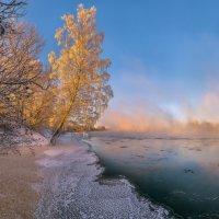 Берёза на берегу реки :: Фёдор. Лашков