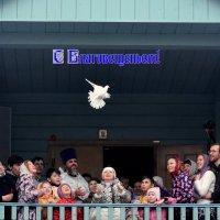 С Благовещеньем! Желаю святой веры, мира в доме, Божьего благословения! :: Татьяна Помогалова