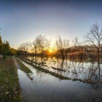Весенний паводок! :: Владимир M