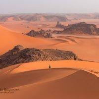 Алжирская Сахара :: Victoria Rogotneva