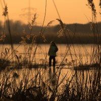Прогулка по замерзшему озеру :: Анна Удалова