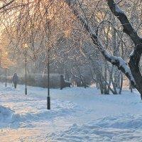 Морозным декабрьским днем :: Екатерина Торганская