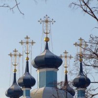 Купола Сампсониевского собора :: Нина Макеева