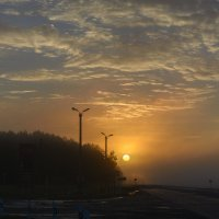Трасса Новосибирск-Омск. Туманное утро :: Александр Янкин