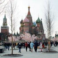 Храм Василия Блаженного. Пасха. :: Ольга Анянова