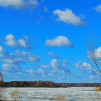 весна на реке :: Попкова Александра