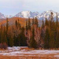 Весенняя панорама :: Анатолий Иргл