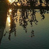 вечер , солнце догорает :: Александр