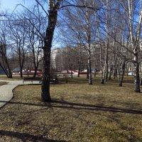 Апрель - самый узнаваемый месяц в году :: Андрей Лукьянов
