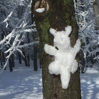 зимние зарисовки :: Татьяна Найдёнова