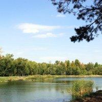 Озеро :: раиса Орловская