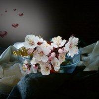 Весна :: Наталия Лыкова