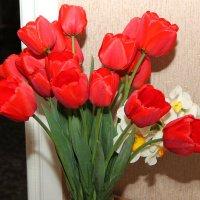 Тюльпаны. :: Владимир Усачёв
