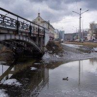 Наконец-то поплаваем :: Валерий Михмель