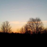 Вечер-закат :: Татьяна Королёва