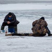 Ловись рыбка - большая и маленькая! :: Татьяна Золотых