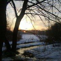 Утренний пейзаж :: Татьяна Лобанова