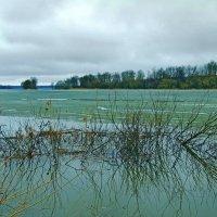 Апрель на реке :: Попкова Александра