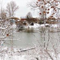 Первый снег :: Вячеслав Маслов