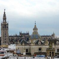 Севилья. Башня Хиральда и Кафедральный собор :: Алла Захарова