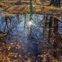 Середина апреля :: Андрей Дворников