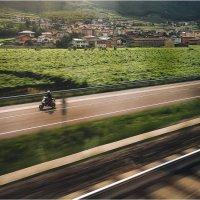 По дороге к Роверето :: DimCo ©