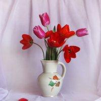 Тюльпаны :: Наталья Джикидзе (Берёзина)