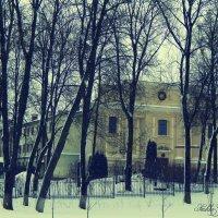 Церковь спряталась средь деревьев :: Сашко Губаревич