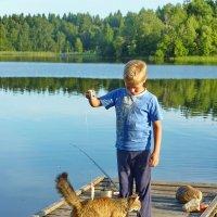 Рыбачок и кошка :: Валерий Талашов