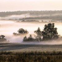 Туман в долине реки Москва. :: Сергей Ключарёв
