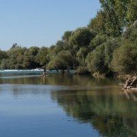 Отражение в реке. :: Татьяна Гусева