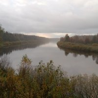 Река Мста. :: Татьяна Гусева