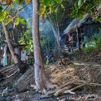 вот так живут рыбаки в Коста Рике :: Георгий