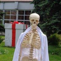 В человеке все должно быть красиво: и душа, и тело, и скелет... :: Алекс Аро Аро