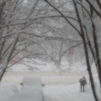 Вспоминая снегопады прошедшей зимы... :: Ирина Via
