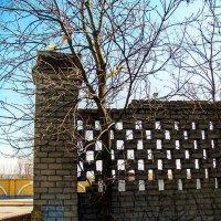Стена :: Дмитрий Чистяков