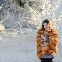 Зимой :: Анастасия Адамович