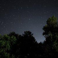 Ночь :: Евгений Нагорский