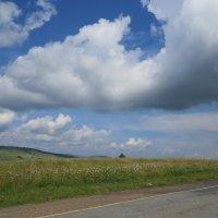 Огромное небо :: Вера Щукина