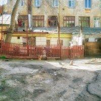 Весеннее утро в одесском дворике. :: Вахтанг Хантадзе