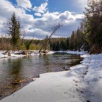 Весенняя таежная река. :: Сергей l