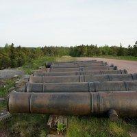 На подходе к башне Нотвиксторнет выложено 9 пушечных стволов :: Елена Павлова (Смолова)