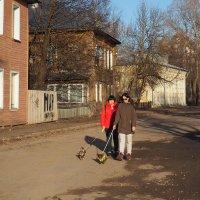 Дамы с собачками :: Татьяна Копосова