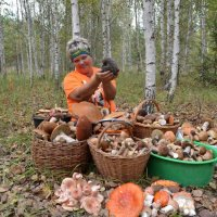 В лес за грибами! :: Елена Салтыкова(Прохорова)