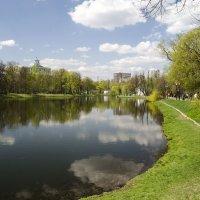 Пруд в парке :: Анатолий Цыганок