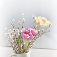 Верба с тюльпанами :: Наталья Булыгина (NMK)