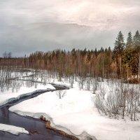Весна :: Виктор Заморков